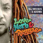 album-tajweekds-loveherbandreggae-web