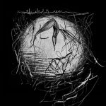 ALBUM-The Absolute-WEB