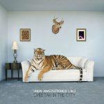 album-union-analogtronics-x-blu-cheetah-in-the-city